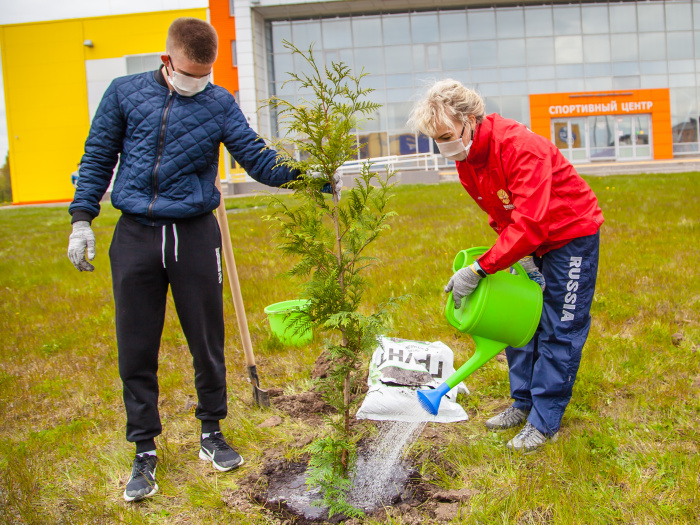 Новгородские спортсмены и тренеры посадили деревья у спортивного центра на Псковской