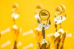 В Великом Новгороде определились победители «Кросса нации» в формате онлайн