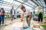 В Новгородской области завершился Всероссийский фестиваль уличного искусства