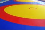 В регион поступило новое оборудование для спортивной борьбы