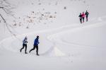 В Великом Новгороде впервые прошел зимний трейловый забег